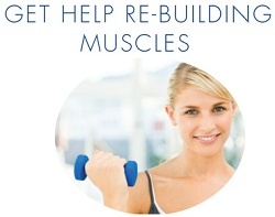 Proteins Help to Rebuild Muscles