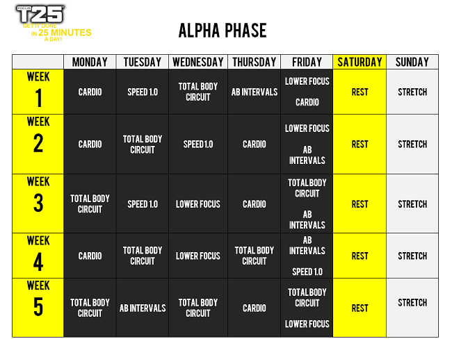 focus_t25_alpha_schedule