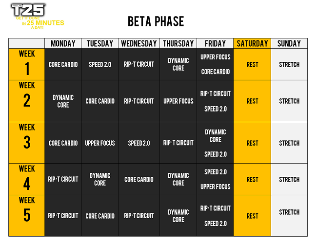 focus_t25_beta_schedule
