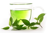 Green Tea : A Vital Fat Burner